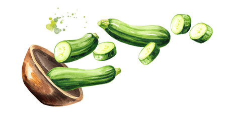 Bowl with fresh zucchini vegetables. Hand drawn horizontal watercolor illustration, isolated on white background