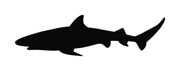 Photo sur Aluminium Dauphins Reef shark vector silhouette isolated on white background. Sea predator. Danger on beach alert. Open jaws of beast. The biggest fear for divers and swimmers. Under water alert. Ocean killer.