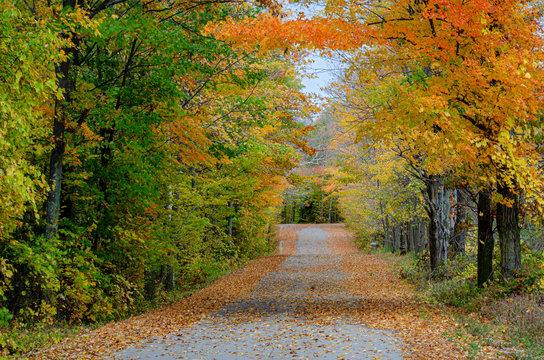 553-27 Birchwood Road Autumn