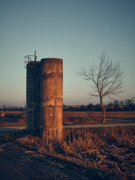 Cement structure and naked tree at sunset