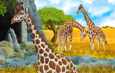 cartoon wildlife safari scene with lion and giraffe illustration for children