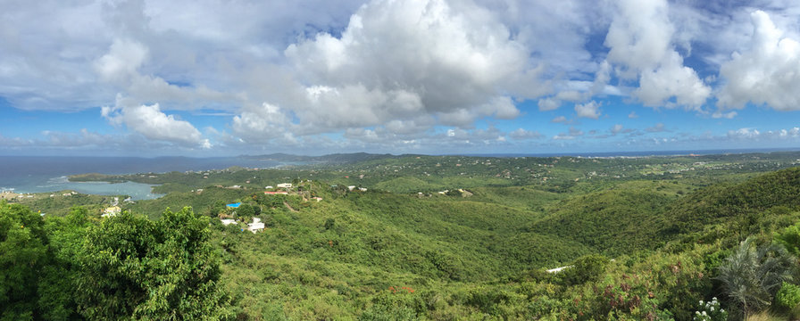 Panorama of the island of St. Croix in the US Virgin Islands; landscape with water and trees