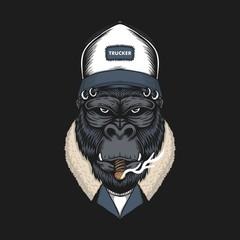 Gorilla head trucker vector illustration