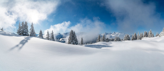Wall Mural - Winter in den Alpen