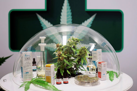 Cannabis oil products made in Thailand are seen on display during the launch of the first official medical cannabis clinic in Bangkok