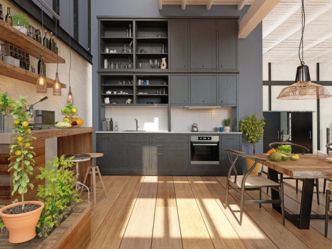 modern domestic kitchen interior.