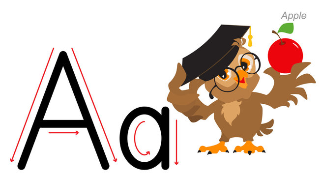 English alphabet picture letter for children. English language abc. Owl teacher holds an apple