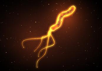Helicobacter pylori bacterium causing peptic ulcer disease, gastritis, 3D medically illustration