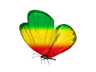 Türaufkleber Schmetterlinge im Grunge butterfly isolated on a white background. with wings of yellow, green, red. Rasta color.