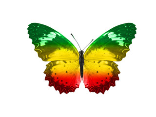 Foto auf Gartenposter Schmetterlinge im Grunge butterfly isolated on a white background. with wings of yellow, green, red. Rasta color.