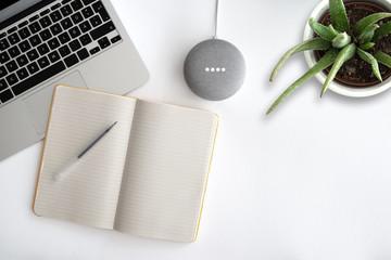 using google assistant on Google home mini smart speaker