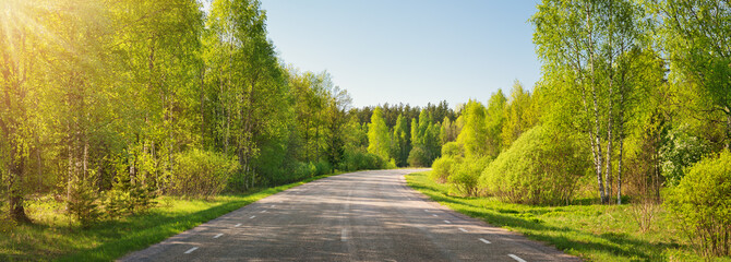 Fotobehang Bomen asphalt road panorama in countryside on sunny summer day