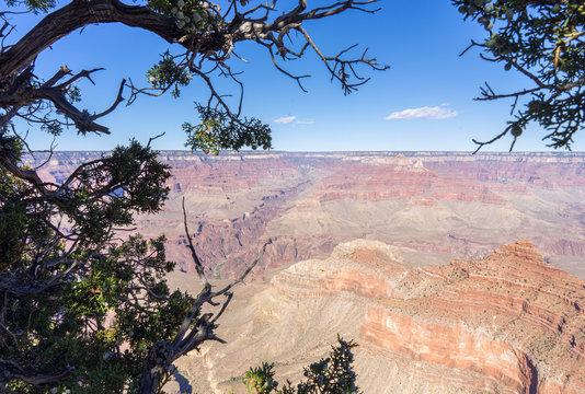 Ausblick beim Wandern im Grand Canyone USA