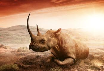 Photo sur cadre textile Rhino rhino in serengeti tanzania africa