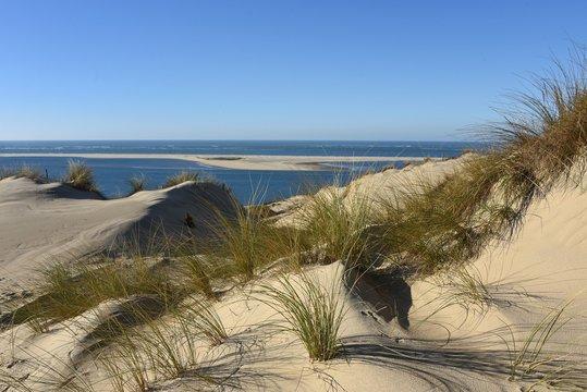 Arcachon, dunes face au banc d'Arguin