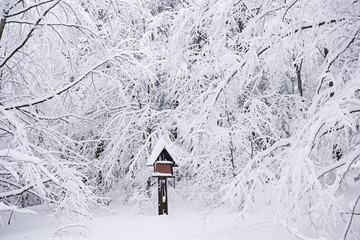 Fototapete - Park sign covered with snow in a winter forest