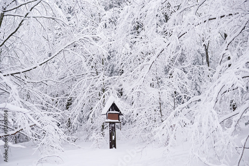 Fototapete Park sign covered with snow in a winter forest