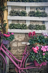 Photo on textile frame Bicycle Vintage pink bike in the street