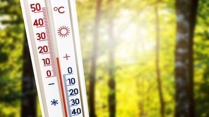 Fototapeten Gelb A thermometer against a background of trees in sunny weather shows 15 degrees of heat_