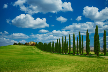 Poster Toscane Tuscany typical landscape