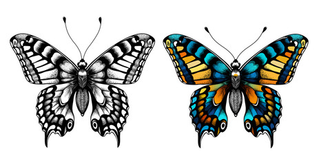 Two butterflies. Kids Coloring Page.