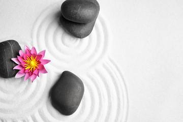Zen garden. Beautiful lotus flower and stones on white sand, flat lay