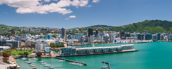 Wellington city, buildings and harbour seen on a beautiful summer's day as viewed from Mount Victoria. Wellington is the capital of New Zealand.