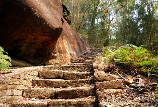 A sand stone stairway going up the hill in Berowra National Park, Australia