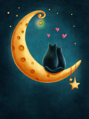Cats on the moon