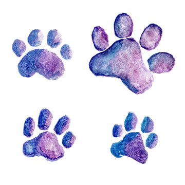 Four blue-violet watercolor dog or cat footprints isolated on white background. Hand-drawn illustration of paw print, clipart for design