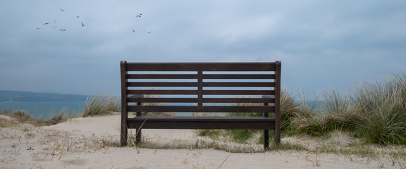 Bench in the dunes cornwall england uk
