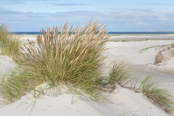 Fototapete - Breiter Strand an der Nordsee