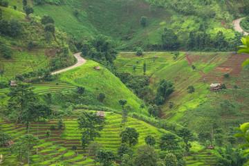 Printed kitchen splashbacks Khaki view of slope rice field in mountain