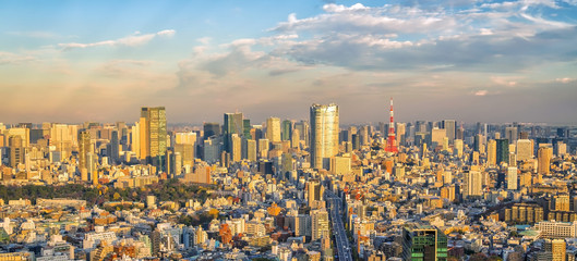 Fotomurales - Top view of Tokyo city skyline in Japan