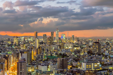 Fotomurales - Top view of Tokyo city skyline at sunset .