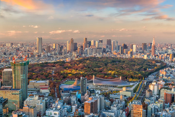 Fotomurales - Top view of Tokyo city skyline in Japan.