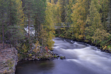 Keuken foto achterwand Bos in mist Cliff, stone wall, forest, waterfall and wild river panoramic view in autumn. Fall colors - ruska time in Myllykoski. Karhunkierros Trail, Oulanka National Park in north Finland. Lapland, Europe