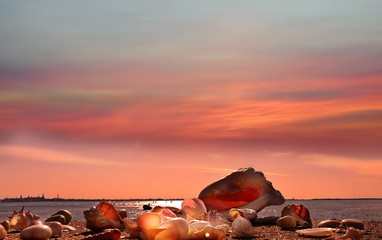 Fotobehang Koraal travel summer holiday romantic pink sunset at sea beach sunlight reflection water wave seashell on sand rock on horizon Tallinn Estonia travelling to Europe beautiful nature blue sky clouds