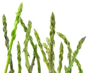 Asparagus Cutout