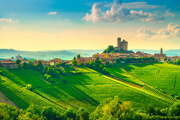 In de dag Wijngaard Langhe vineyards sunset panorama, Serralunga Alba, Piedmont, Italy Europe.