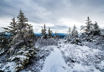 The White Mountains in winter, New Hampshire, United States Fotoväggar