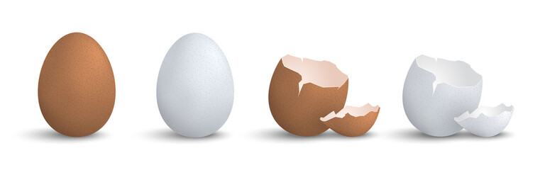 Set of 3d realistic eggs isolated eps10 vector elements, chicken egg, cracked egg decoration template