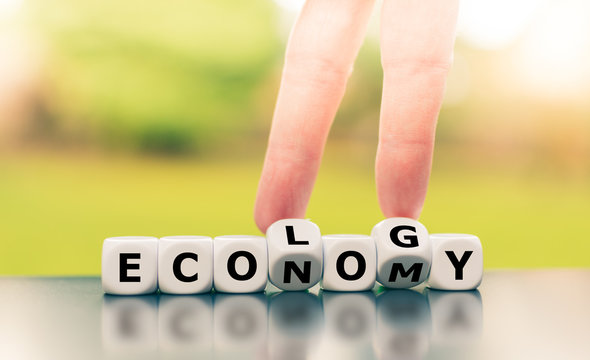 Economy versus ecology. Finger turn  dice and changes the word economy to ecology.