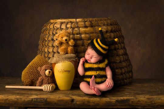 Sleepy baby bee