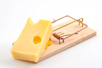 Vermin and pest control conceptual idea mouse trap used to catch a mouse with cheese as bait isolated on white background