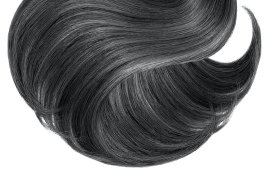 Black hair isolated on white background. Long ponytail