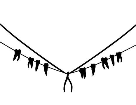 Teeth & Wishbone Necklace