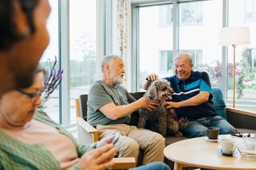 Smiling senior men stroking dog sitting on sofa against window at elderly nursing home