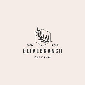 olive oil tree branch logo hipster vintage retro vector icon illustration