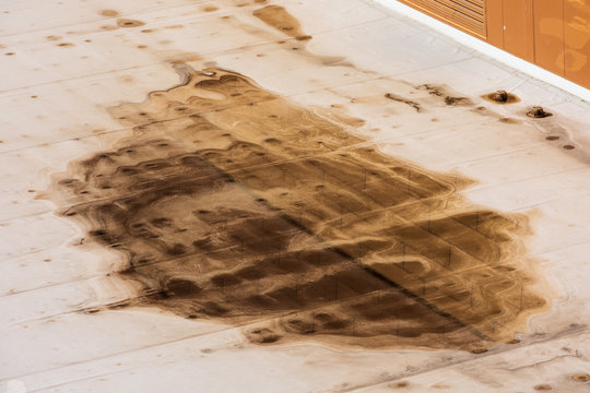 Ponding dirty water on settled flat roof is a sign of a drainage problem. Excessive ponding can attract insects, mold, vegetation and cause structural damage to the building